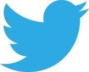 Twitter, red social de microblogging